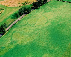 Henges at Blackruthven