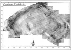 Cardean 2001 survey