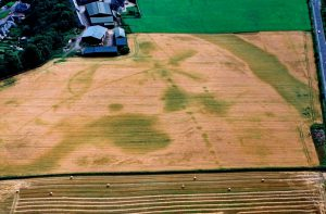 The Huntingtower cropmark complex